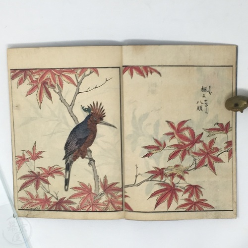 Kacho Zue - Illustrations of Birds and Flowers  Complete set of 6 vol. by Kitao Shigemasa
