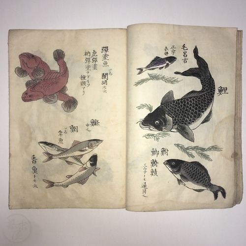 Sketches of Living Things by Hasegawa Seizo